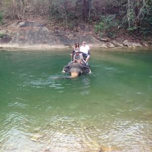 Elephant Dive Thailand 2013
